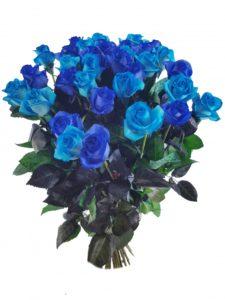 Kytice modrých růží